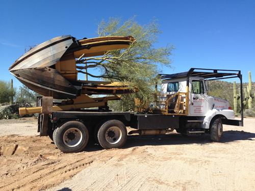 Tucson Saguaro Cactus, Palm Tree Relocation, Removal, Installation